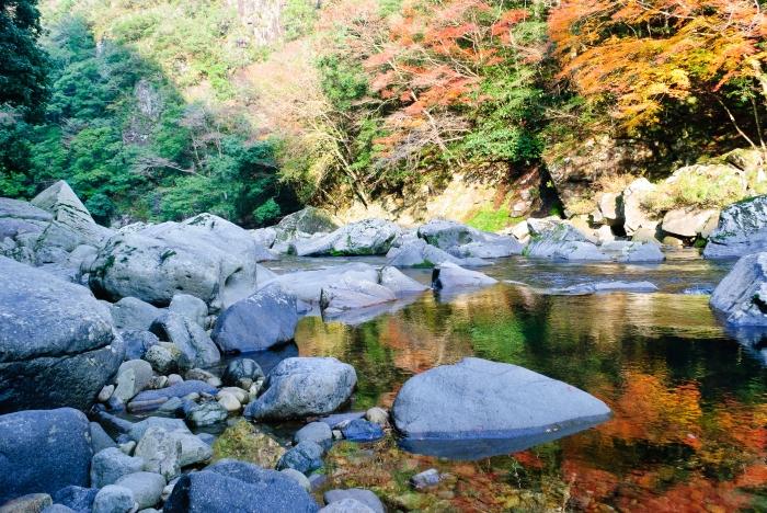 autumnalscenery