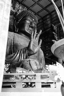 todai-ji-buddha
