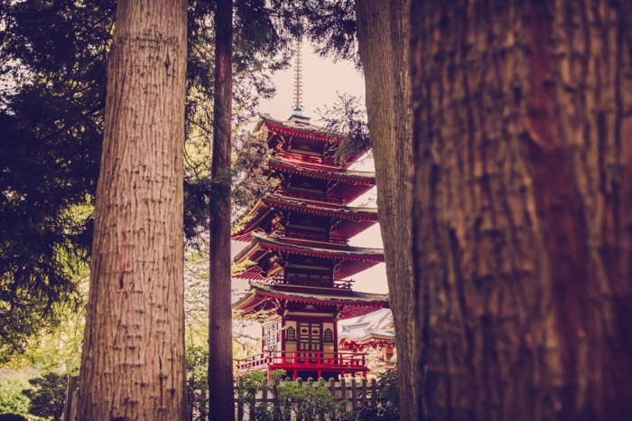 japanese-tea-garden-san-fransico-golden-gate-park