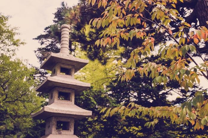 japanese-tea-garden-golden-gate-park-san-fransisco