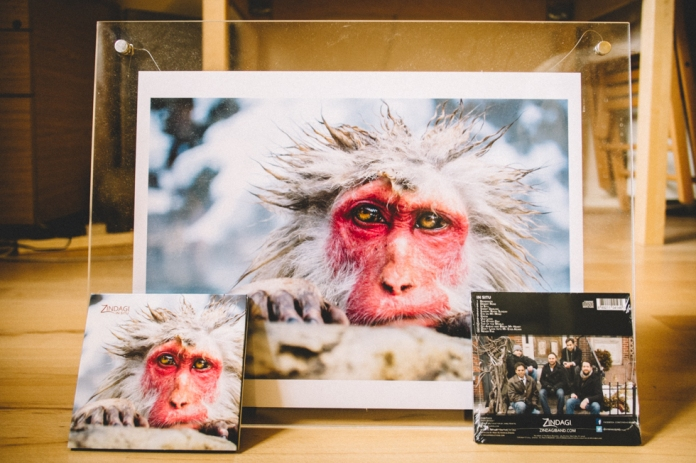 monkey-album-art-work-2