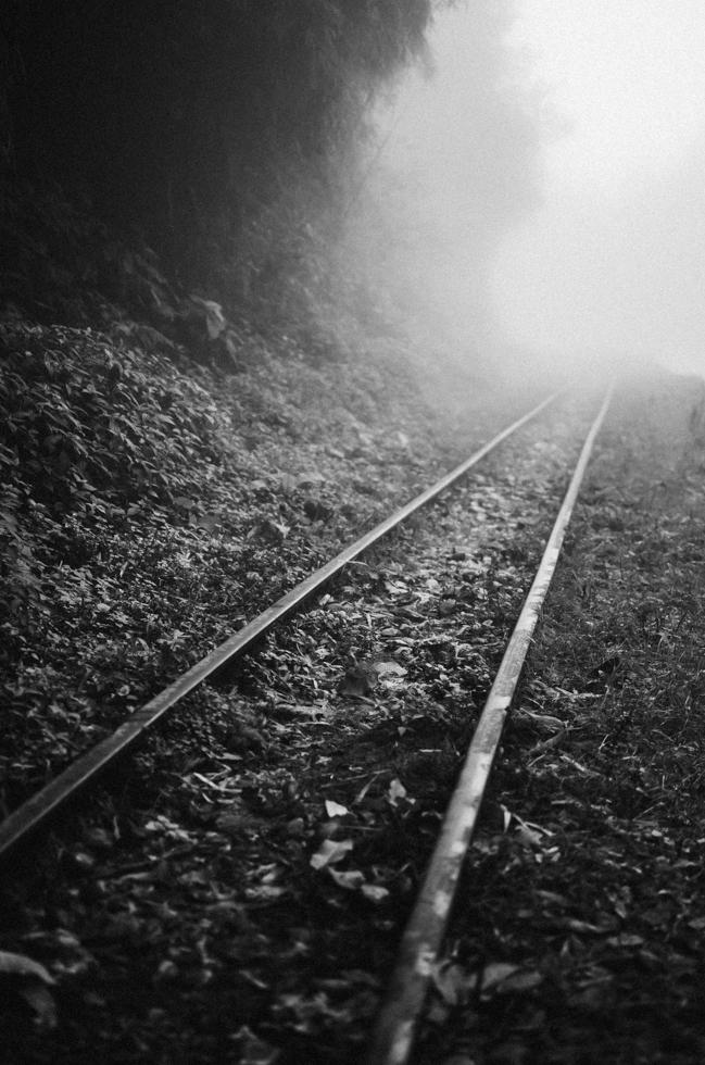 misty-railtrack