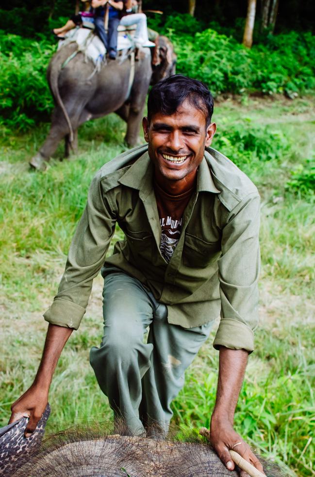 elephant-nepal-chitwan