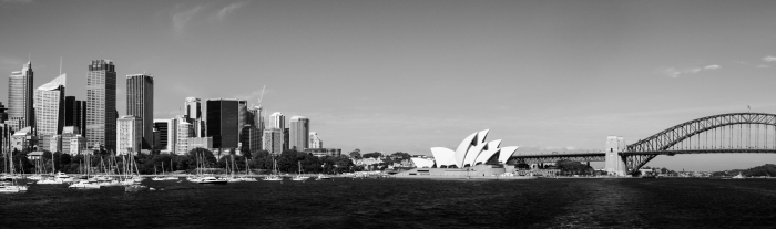 snowmonkeyphoto-Sydney - New Years-10