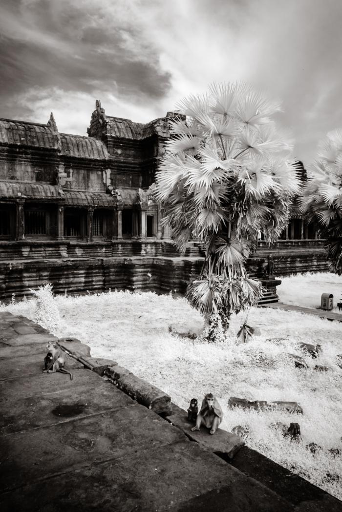 infrared_cambodia-19