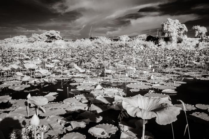 infrared_cambodia-22