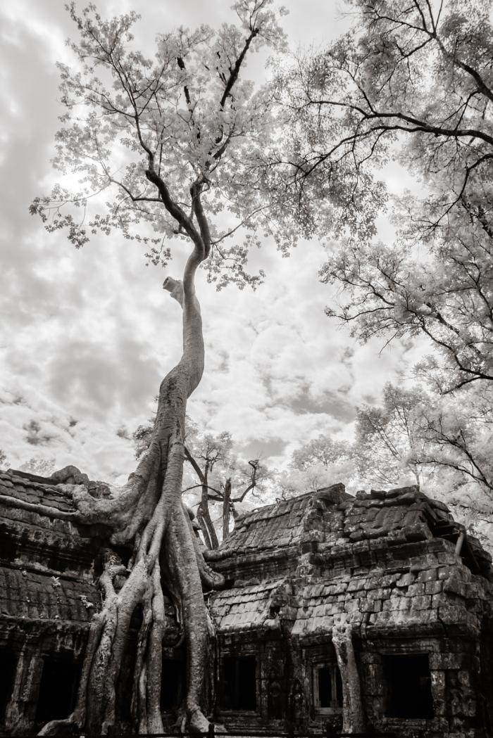 infrared_cambodia-3