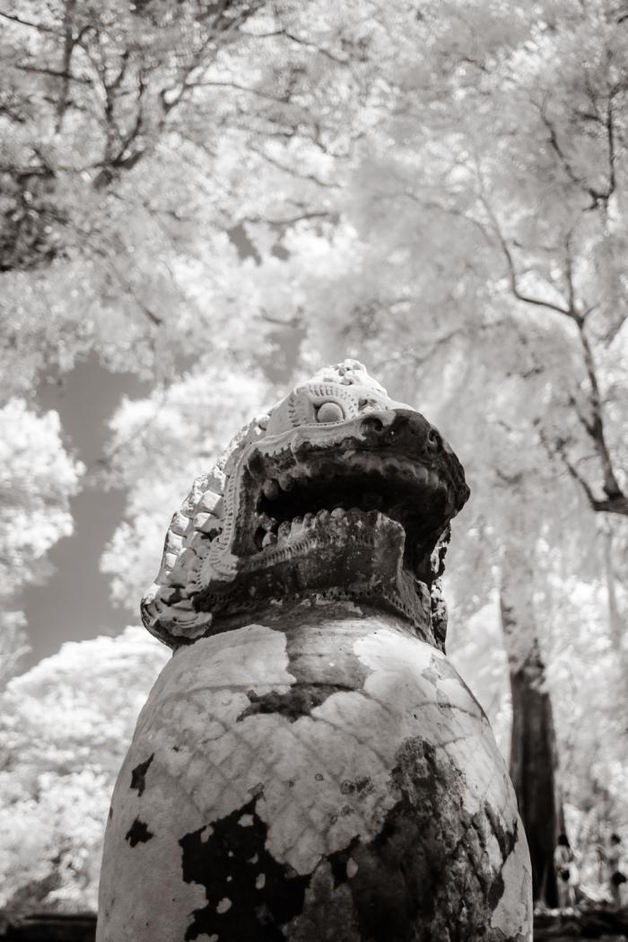 infrared_cambodia-7